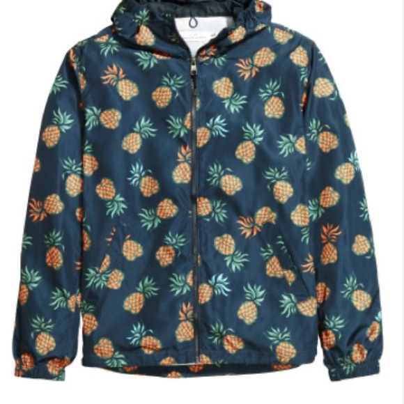 Pineapple windbreaker / raincoat
